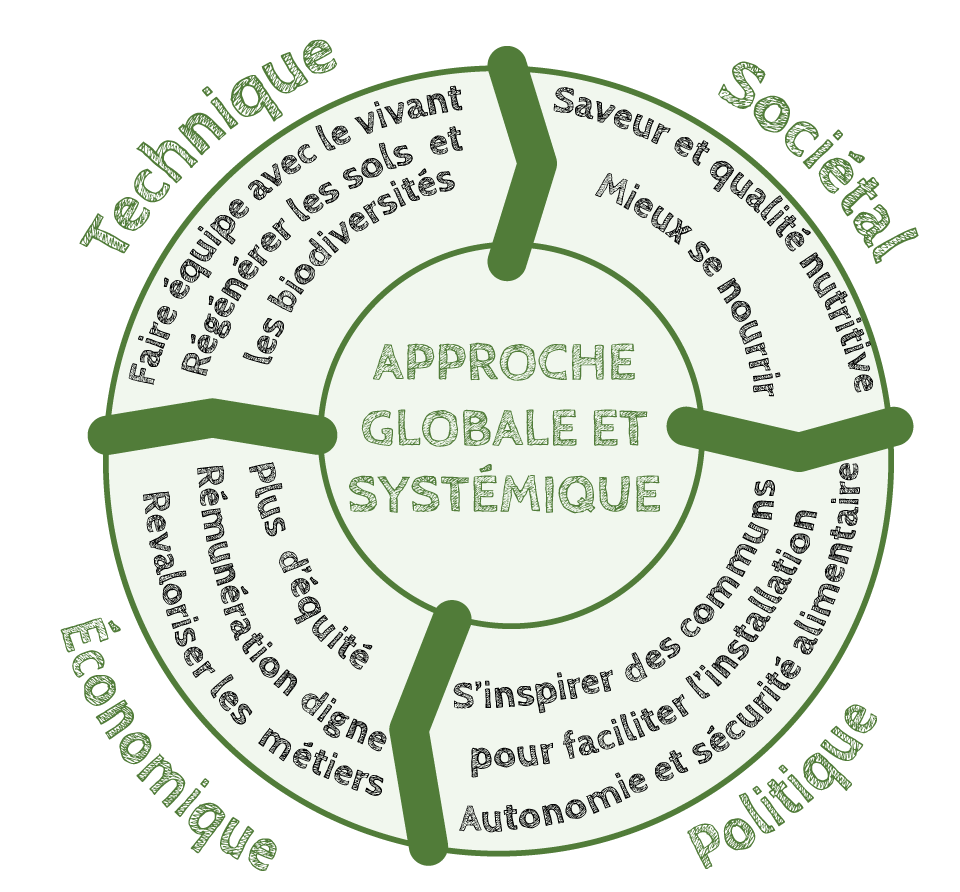 approche globale systemiqueAPE